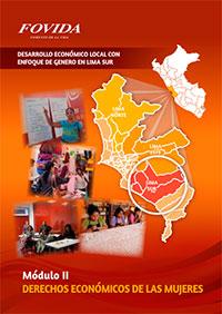 Desarrollo económico local con enfoque de género en Lima Sur: Módulo ll Desarrollo económico de las mujeres