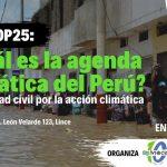 INFOVIDA | COP25: Sociedad civil dialogará con el Estado para afrontar el cambioclimático