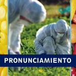 INFOVIDA | Pronunciamiento de la RAP exige la inmediata derogatoria del Reglamento que viola la ley de moratoria de los transgénicos del Perú