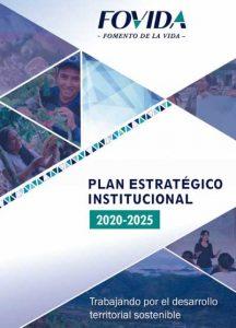 Plan institucional 2020-2025