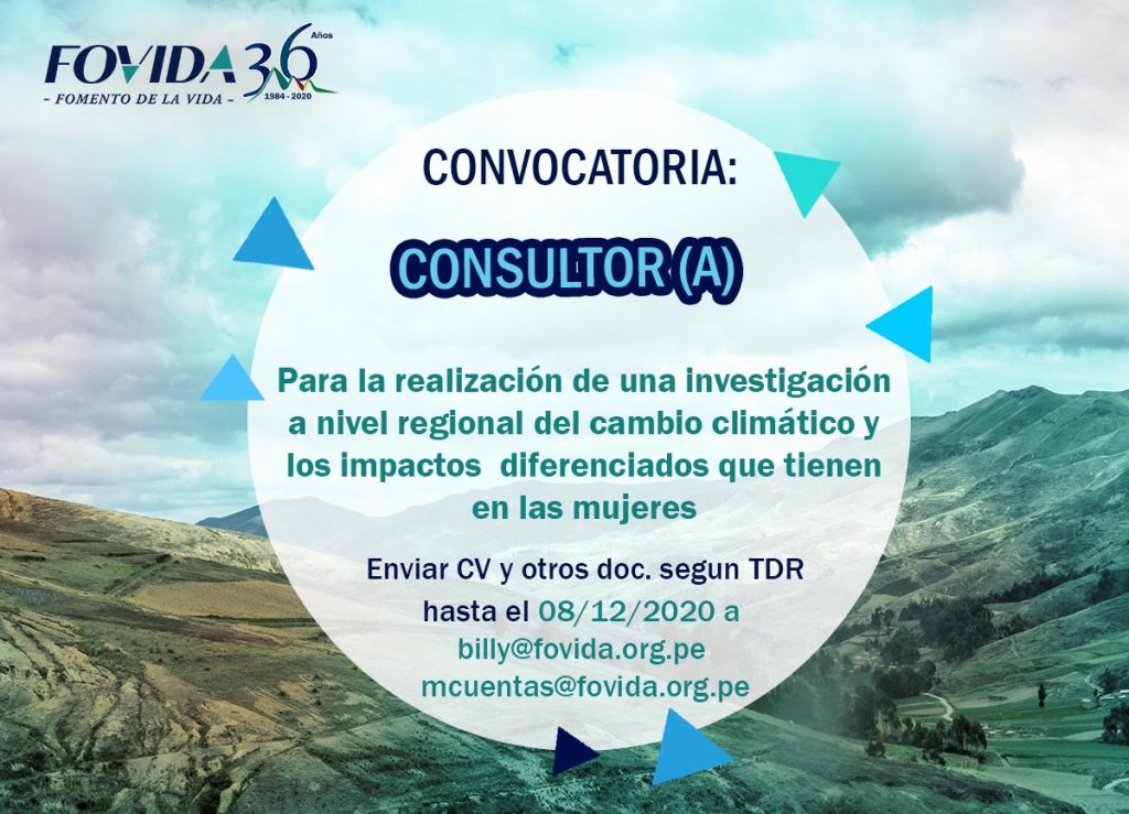 Consultoria investigacion
