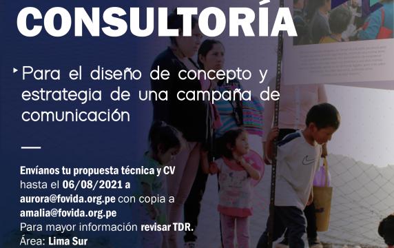 Consultor para campaña-01-01
