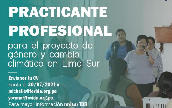 Practicante profesional-01-01